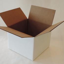 25T White Shipping Carton